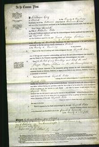 Court of Common Pleas - Elizabeth Wiles #3-Original Ancestry