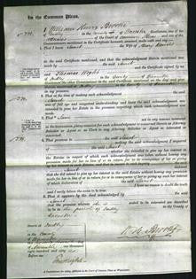 Court of Common Pleas - Jane Bowers-Original Ancestry