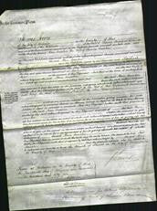 Court of Common Pleas - Ann Smooker-Original Ancestry
