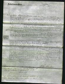 Court ofCommon Pleas - Ann Steadman and Elizabeth Briscoe-Original Ancestry