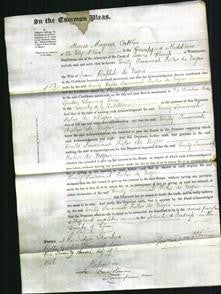 Court of Common Pleas - Emily Susannah Fisher de Nigris-Original Ancestry