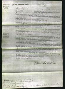 Court of Common Pleas - Elizabeth Young-Original Ancestry
