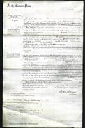 Court of Common Pleas - Marianne Janetta Thompson-Original Ancestry