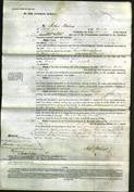 Court of Common Pleas - Ursula Bolton Moretti-Original Ancestry