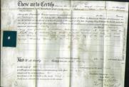 Deed by Married Women - Emily Lacey-Original Ancestry