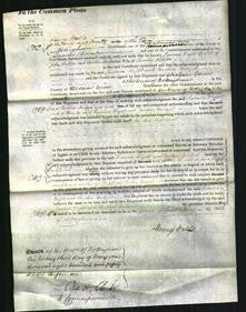 Court of Common Pleas - Susanna Wright Cullen and Caroline Bridget Webster-Original Ancestry