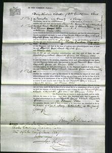 Court of Common Pleas - Elizabeth George, Sarah Elizabeth Green and Eleanor Ellis-Original Ancestry