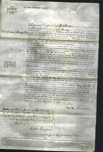 Court of Common Pleas - Elizabeth Rouse-Original Ancestry