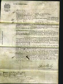 Court of Common Pleas - Augusta Isabella Christie-Original Ancestry
