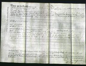 Deed by Married Women - Ann Whitehead Wilson and Elizabeth Crossland-Original Ancestry