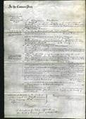 Court of Common Pleas - Catharine Crosthwait-Original Ancestry