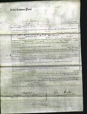 Court of Common Pleas - Eleanor Ashby-Original Ancestry