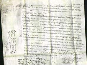 Court of Common Pleas - Ann Higson and Elizabeth Marley-Original Ancestry