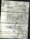 Court of Common Pleas - Mary Elizabeth Holland-Original Ancestry