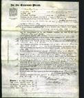 Court of Common Pleas - Frances Tinkler, Ann Watson, Esther May-Original Ancestry
