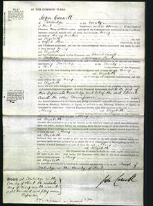 Court of Common Pleas - Mary Hoakes and Elizabeta Stone-Original Ancestry