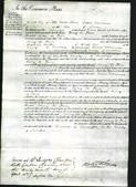 Court of Common Pleas - Mary de Thier-Original Ancestry