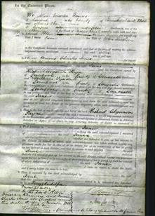 Court of Common Pleas - Jane Sieldorn-Original Ancestry