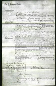 Court of Common Pleas - Mary Elizabeth Hore-Original Ancestry