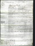 Court of Common Pleas - Alice Gilbert-Original Ancestry