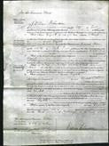 Court of Common Pleas - Elizabeth Whincup-Original Ancestry