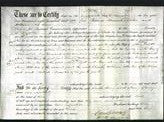 Deed by Married Women - Sarah Sterry Carrion, Mary Sterry Everett-Original Ancestry