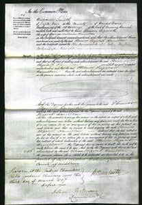 Court of Common Pleas - Eleanor Elizabeth Hamilton-Original Ancestry