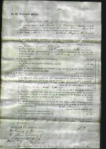 Court of Common Pleas - Ann Williams-Original Ancestry
