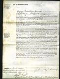 Court of Common Pleas - Eliza Lane-Original Ancestry
