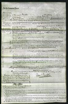 Court of Common Pleas - Jane Coltman-Original Ancestry