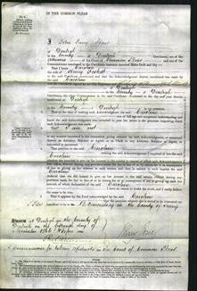 Court of Common Pleas - Caroline Foskett-Original Ancestry