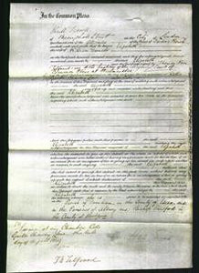 Court of Common Pleas - Elizabeth Daniels-Original Ancestry