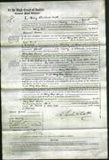 Court of Common Pleas - Amy Ann Jarvis-Original Ancestry