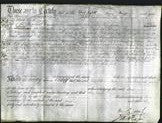 Deed by Married Women - Elizabeth Dolbear, Ann Hockey, Hannah Draw-Original Ancestry