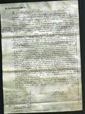 Court of Common Pleas - Hannah Matthews, Ann Sheppard, Elizabeth Adams, Susan Harris-Original Ancestry