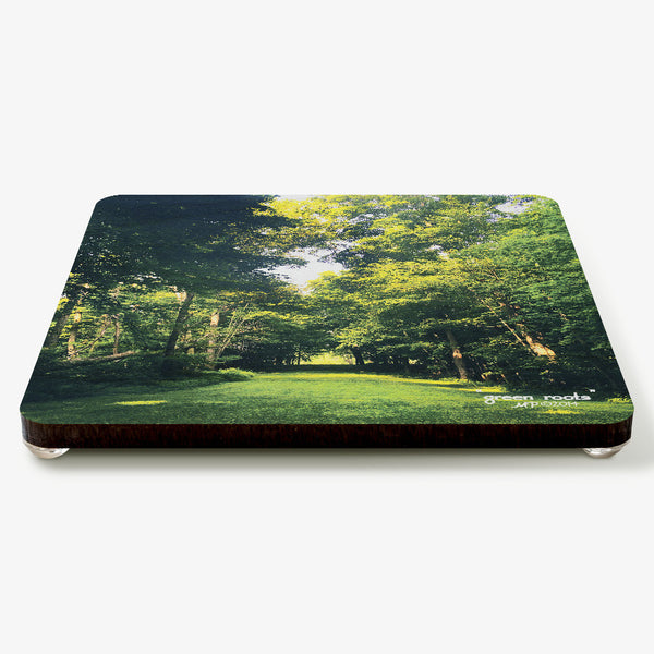 Green Roots Coaster