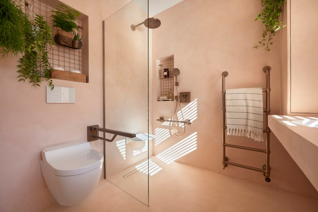 The shower and loo with the grab bar down