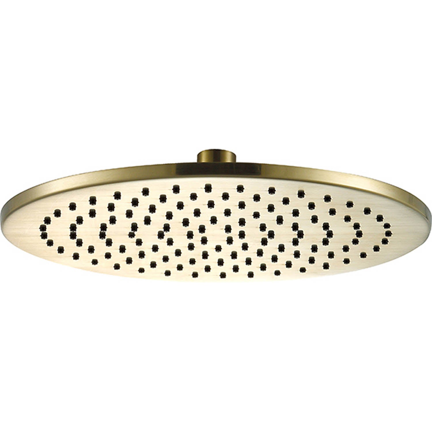 250mm Libero Rainwater Shower Head with a brushed brass finish on a white background