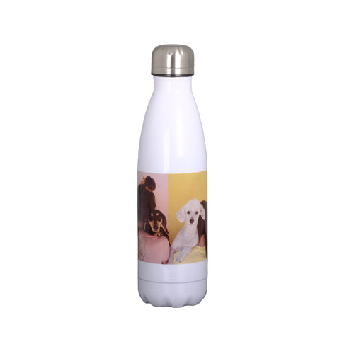 17oz Stainless Steel Water Bottle (4442847903802)