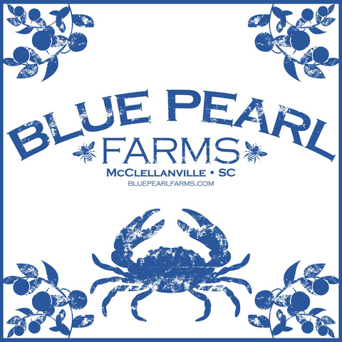 Blue Pearl Farms - Raw Wildflower Honey 16 OZ