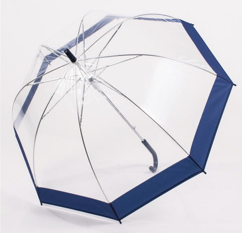 Clear Child's Umbrella
