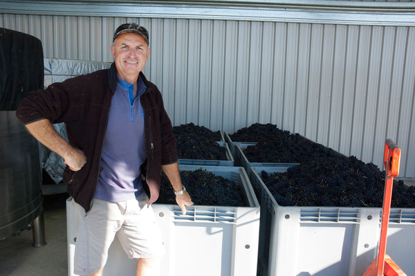 Daniel Schwarzenbach with grapes for  gold-medal-winning Nelson Pinot Noir 2014