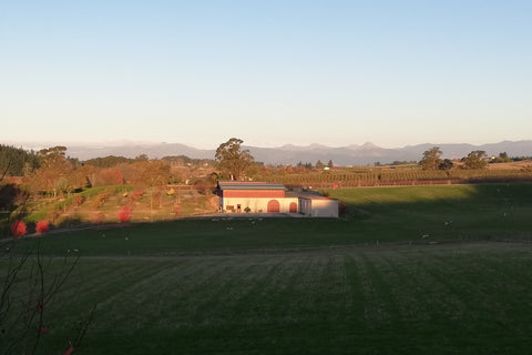Blackenbrook Boutique Winery in sunny Nelson, New Zealand