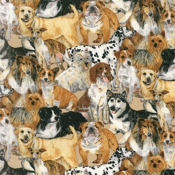 Yellow Labrador, Boxer, Huskies, Collie, Greyhound, Terrier, Dalmatians