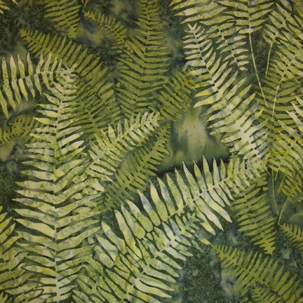 Fern - Green colour