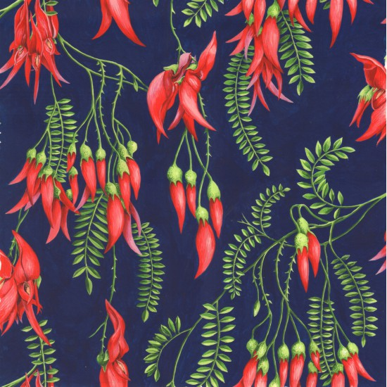 Kaka Beak - New Zealand plant in Green and Red on Navy background