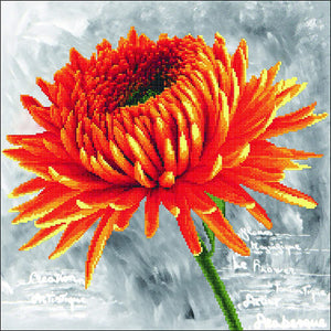 Needleart World Pre-Printed Cross-stitch kit - Orange Dahlia
