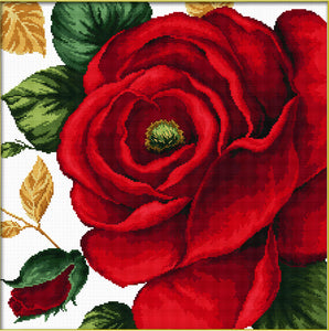 Ladybird Needleart World Pre-Printed Cross-stitch kit - Red Rose