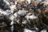 Possum fibre for spinning - 50 gram bags