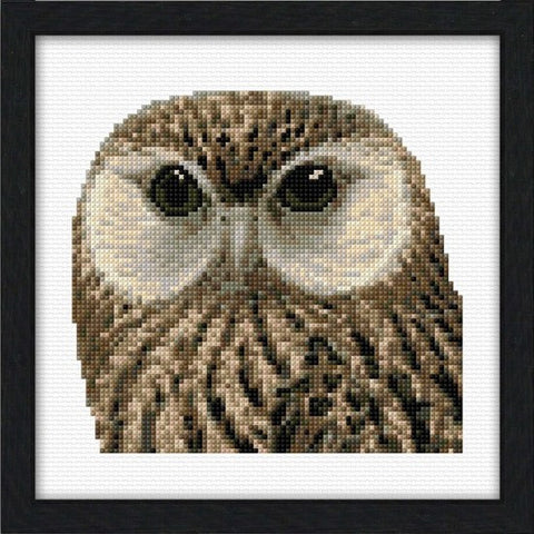 Cross-stitch kit - Laughing Owl